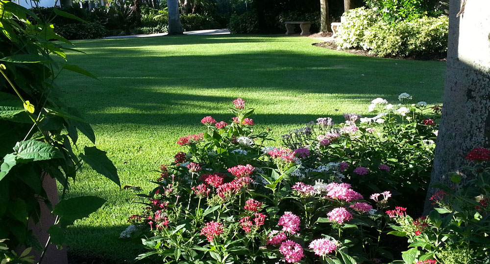 Complete Landscape Maintenance Services for a Healthy Well-Maintained  Landscape - Sarasota Landscape Maintenance Services Longboat And Siesta Key FL