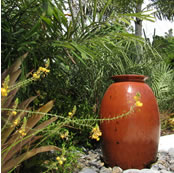 longboat key sustainable landscape